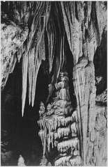 """Formations, along trail in the Big Room, beyond the 'Temple of the Sun.' Carlsbad Caverns National Park,"" New Mexico. ( - NARA - 520038.tif"