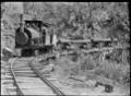"""Knight's tram, Raurimu"" hauling logs. ATLIB 292526.png"