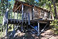 '10 The Molly Hughes cabin on trail of same name - panoramio (1).jpg
