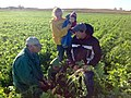 @NRCS SD Soil Health Specialist Jeff Hemenway, Huron, discussing with the Heber Family in Spink County, SD, about their farm management practices that have led to the healthy soil in this field. (21653167570).jpg