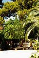 ® ┼ M.D. EL CAMPELLO VILLA MARCO JARDÍN - panoramio (5).jpg
