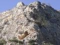 Κοιλάδα Τεμπών - Άλσος με θέα την κορυφή των βράχων πάνω από την Αγία Παρασκευή.jpg