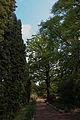 Ботанічний сад 18.JPG