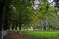 Вороновиця - Парк DSC 1746.JPG