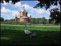 В селе Заворонежское в 1895 году на средства прихожан была построена церковь, действующая до сих пор. - panoramio.jpg