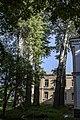 Група вікових дерев тополі білої 14.jpg