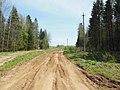 Дорога за Екимятами, конец мая 2013 - panoramio (4).jpg