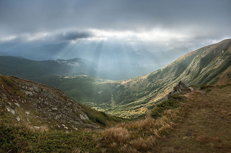 This file was a finalist in Picture of the Year 2014. View of Carpathian National Park from Hoverla. Carpathian National Park, Ivano-Frankivsk Oblast, Ukraine. By Balkhovitin, freely licenced under CC-BY-SA-3.0. This is a featured picture and a Quality image on Wikimedia Commons.