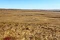 Карстовое поле Жанатаускен. Северо-восточное направление - panoramio.jpg