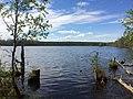 Ковдозеро (озеро, Ледмозерское сельское поселение).jpg
