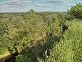 Краєвид зі скелі Топиришки над річкою Псел (2014).jpg