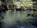 Матка-Скопје, Македонија 47 - panoramio.jpg