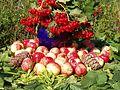 Молодильные яблоки.jpg
