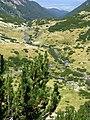 Река Бъндерица. Поглед от пътя за хижа Синаница, Пирин.jpg