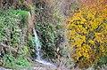 Смотрицький каньйон у Кам'янець-Подільському. Фото 3.jpg