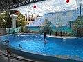 Сочинский дельфинарий парка «Ривьера». 67.jpg