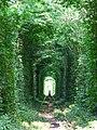 Тунель) - panoramio.jpg