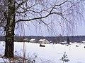 Цирулькалнс (зима) Cīruļkalns ziemā - panoramio.jpg