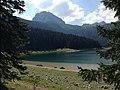 Черное озеро - panoramio (4).jpg