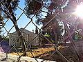 בית העם הטמפלרי דרך הגדר.JPG