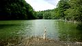 دریاچه شورمست (میانشه).jpg