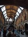 متحف التاريخ الطبيعي20.jpg