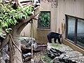 上野動物公園, Ueno Zoo(Ueno Zoological Gardens) - panoramio (19).jpg