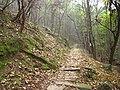南山古道的秋景 - panoramio.jpg