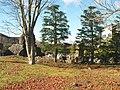 散歩道2 - panoramio.jpg