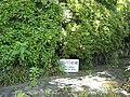 日本最古のアスファルト道路 - グラバー園 - panoramio.jpg