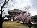 東大寺 Todai-ji Temple - panoramio.jpg