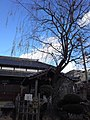 柳と井戸 - panoramio.jpg