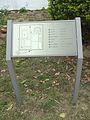 桃園觀音白沙岬燈塔 39 (14979506667).jpg