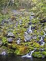 湯の滝 - panoramio.jpg