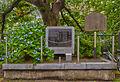 長谷川 伸の碑.jpg