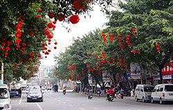 防城区春节景象 - panoramio.jpg