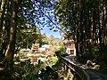 阿里山受鎮宮與池水.jpg