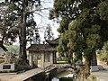 陈宅古村两岸同根奇观 - panoramio.jpg