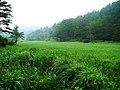 黒沢湿原 - panoramio.jpg