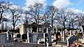- Cmentarz Nowofarny - panoramio (39).jpg