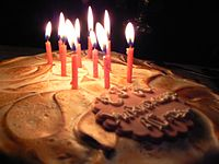 10-years-Wikipedia-BGWPmeetup-cake-20110115-2.jpg