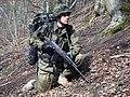 11 Dywizja Kawalerii Pancernej - rok 2010 (06).jpg