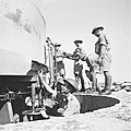 14th Regiment Coast Battery, Royal Artillery, Haifa.-ZKlugerPhotos-00132h2-907170685123828.jpg