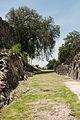 15-07-13-Teotihuacán-RalfR-N3S 9258.jpg