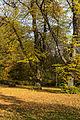 15-11-01-Kaninchenwerder-RalfR-WMA 3287.jpg