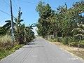 172Balsik Saba Road, Hermosa, Bataan 26.jpg