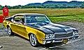 1972 Buick Skylark (2599946937).jpg
