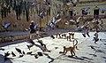 1996 -221-26 Jaipur Amber Fort (2234188940).jpg