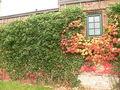 2008-10-19-niederfinow-22.jpg