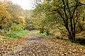 2010 , The Brislington Brook in autumn - geograph.org.uk - 2151472.jpg